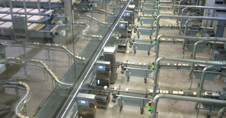 Checkweigher Systems - Multiple Lines